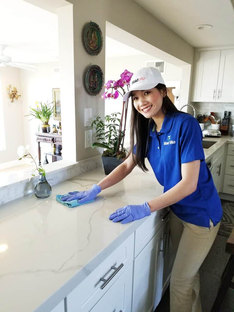 Home and Office Cleaning Services – Making Lives Easier, One Clean ...